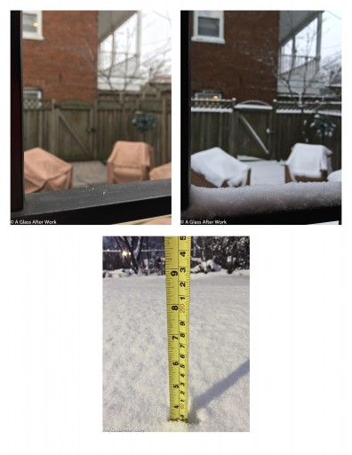 Snowzilla 2016: Day 1 -- Our backyard as the snow started and then again around 7:30pm, along with our last measure of the night.